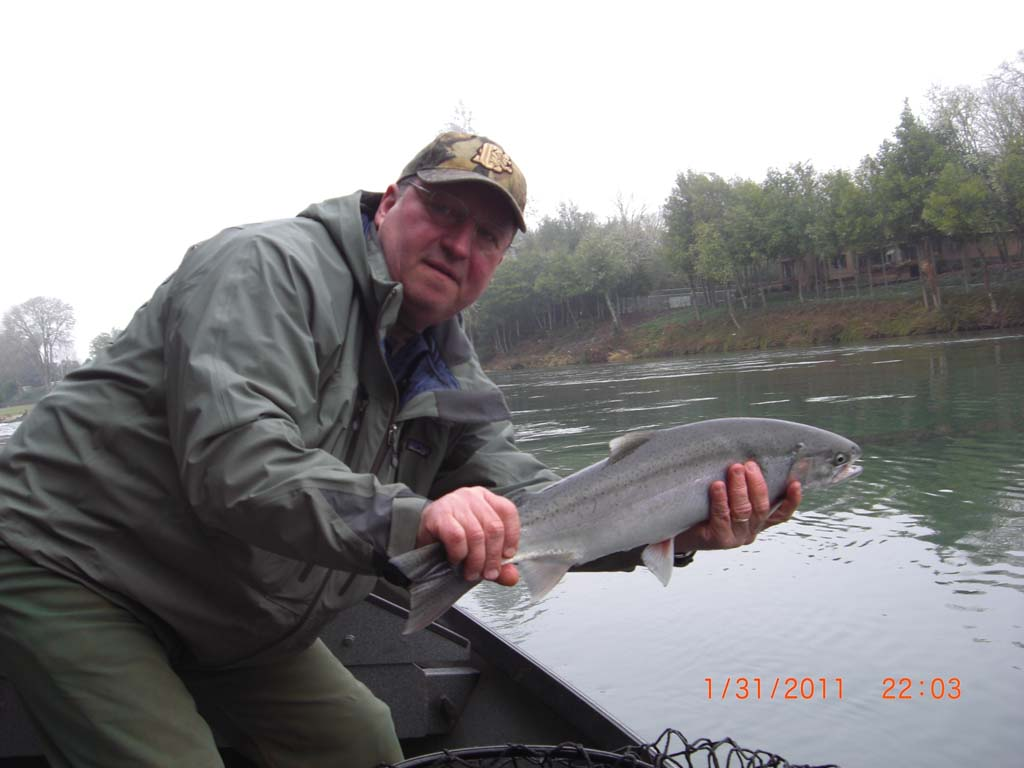 Steelhead-salmon-images-01