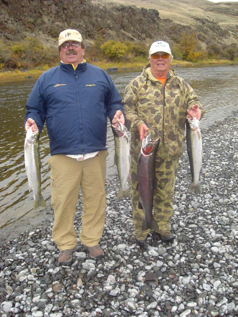 Steelhead-salmon-images-25