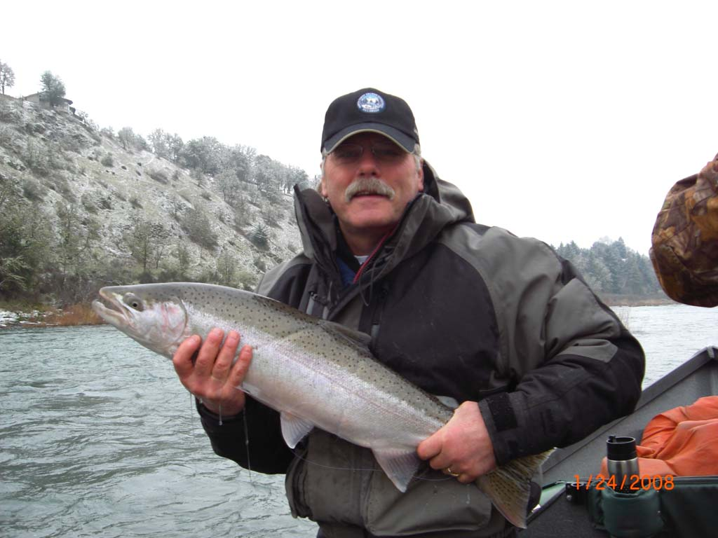 Steelhead-salmon-images-27