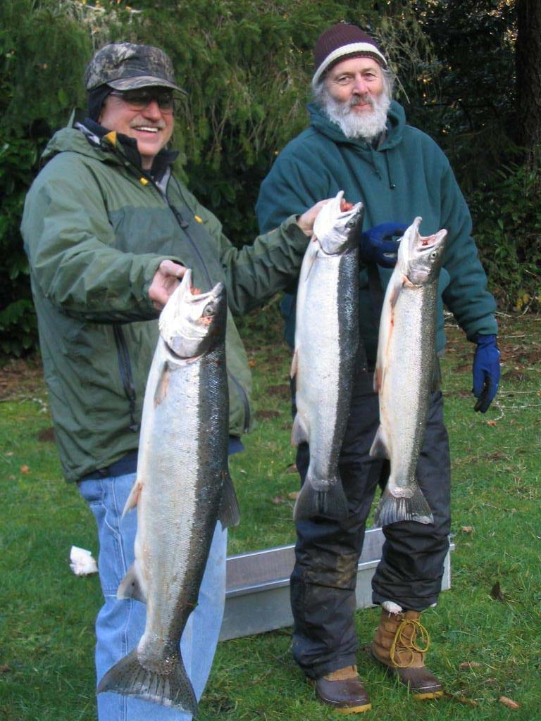 Steelhead-salmon-images-38