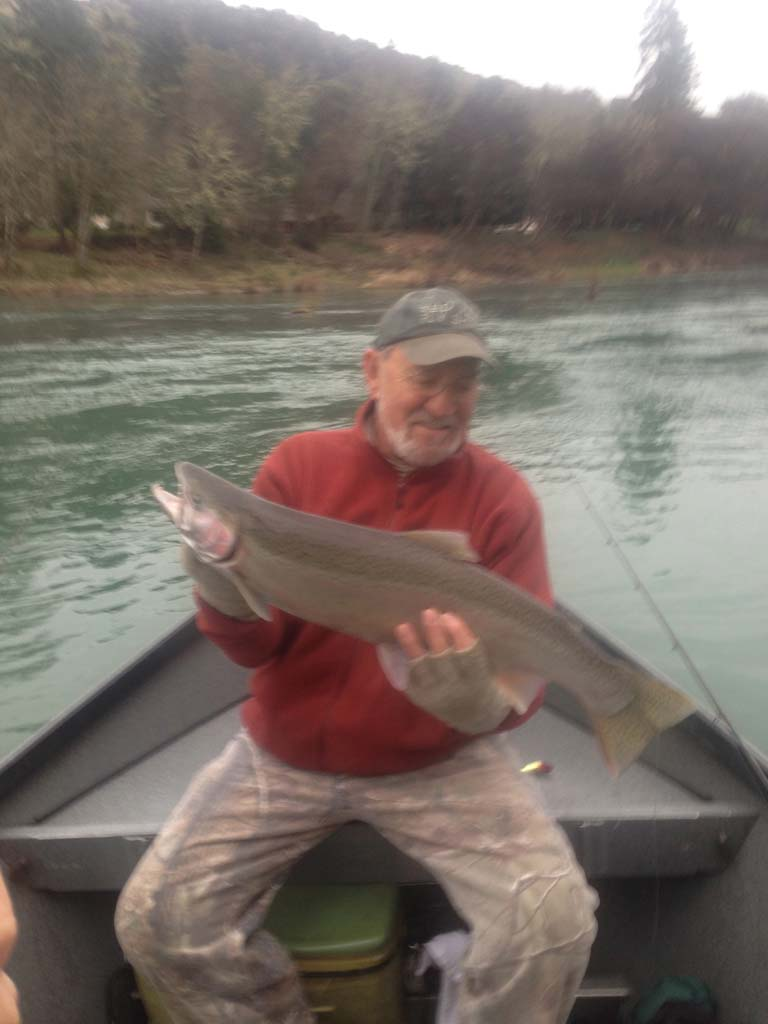 Steelhead-salmon-images-58